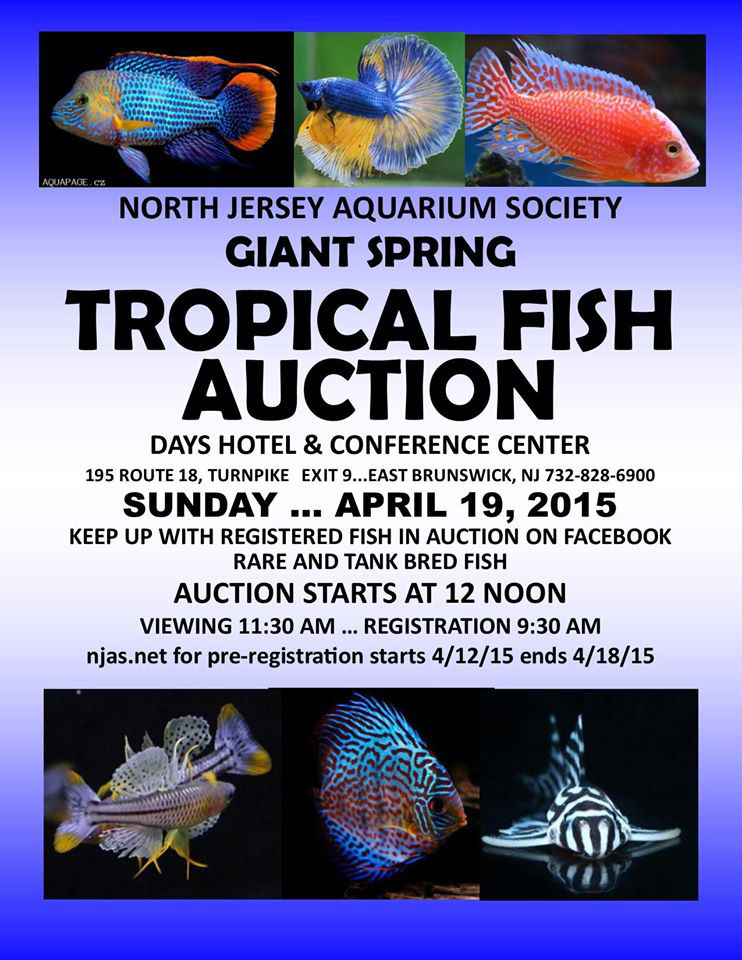 Spring 2014 Auction Flyer